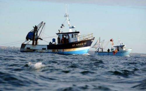 French fishermen fish for scallops off Quiberon, western France, on October 30, 2012