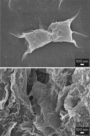 Functional materials--two ways to kill