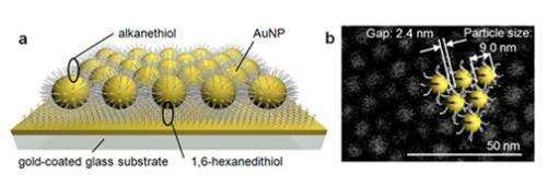 Gold nanoparticle catalyst that learns from enzyme in nature