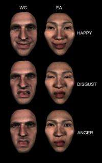 Group finds facial expressions not as universal as thought
