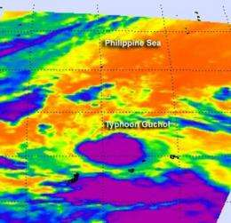 Guchol is a tiny typhoon on NASA satellite imagery