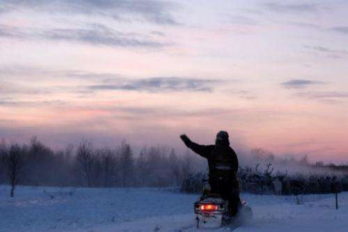 Herders round up reindeer on snowmobiles near a farm in Lovozero