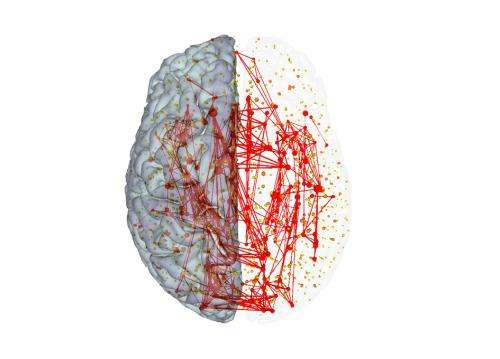 Highways of the brain: High-cost and high-capacity