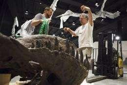 Houston museum unveils $85 million dinosaur hall (AP)
