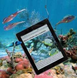 How is a Kindle like a cuttlefish