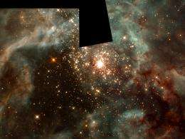 How nature shapes the birth of stars