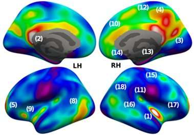 Imaging the network traffic in our brains