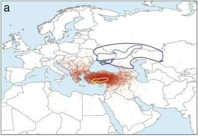 Indo European Languages Originate In Anatolia