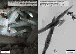 Scientists discover initial stages by which gypsum crystals form