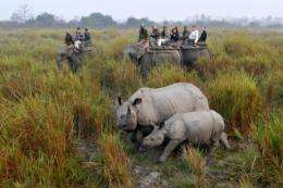 Kaziranga is home to the world's single largest population of one-horned rhinos