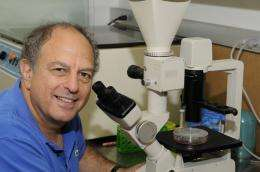 Key enzyme plays roles as both friend and foe to cancer