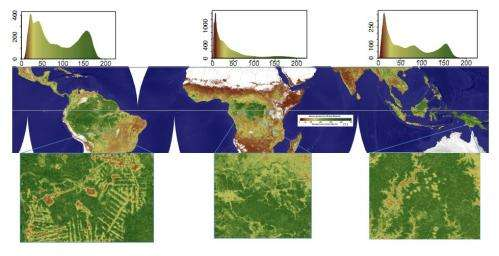 Carbon storage in tropical vegetation: New map to help developing nations track deforestation, report on emissions