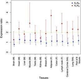 Adam's rib, revisited: Evolutionary divergence of mammalian sex chromosomes