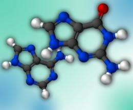 Metabolic errors can spell doom for DNA