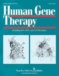 Method to prevent rejection of disease-fighting proteins described in Human Gene Therapy journal
