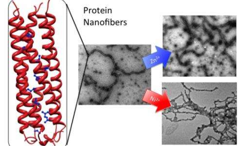 Nanofiber breakthrough holds promise for medicine and microprocessors