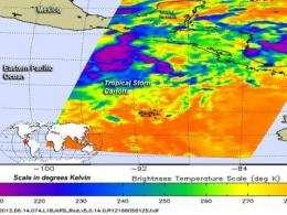 NASA sees bitter cold cloud tops in newborn Tropical Storm Carlotta