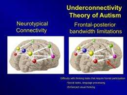 Why Autism Is Different In Brains Of >> New Brain Imaging And Computer Modeling Predicts Autistic Brain