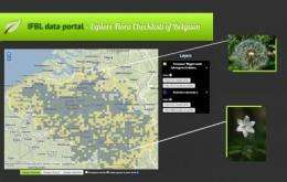 New tool for visualizing the distribution of vascular plants in Belgium