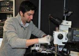 New understanding of how materials change when rapidly heated