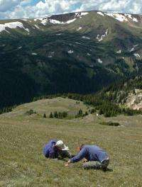 Nitrogen pollution changing Rocky Mountain National Park vegetation, says CU-Boulder-led study