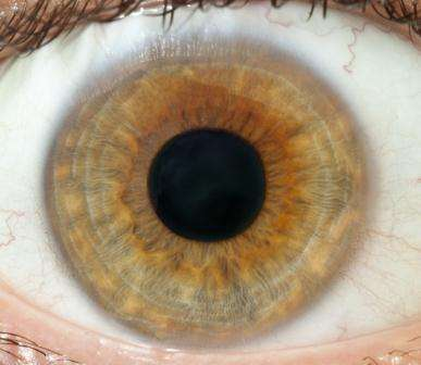 Novel drug may stop eye disease