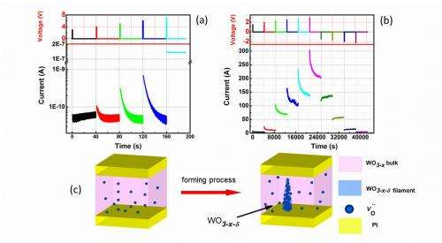 On-demand synaptic electronics: Circuits that learn and forget