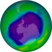 Ozone hole UV impacting marine life:  study