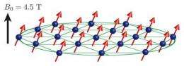 Physicists benchmark quantum simulator with hundreds of qubits