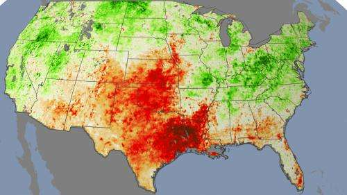 Plant stress paints early picture of drought