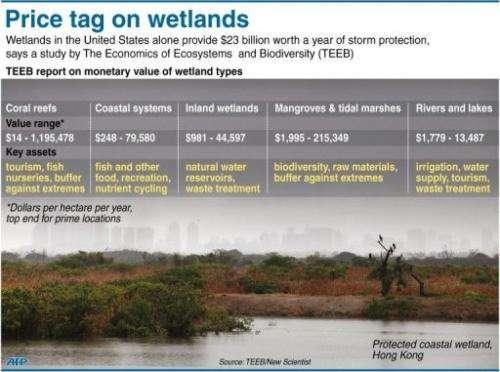 Price tag on wetlands