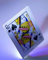Queen of spades key to new evolutionary hypothesis