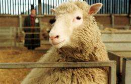 Scientist who helped clone sheep Dolly dies
