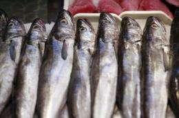 Spanish consumers prefer national fish