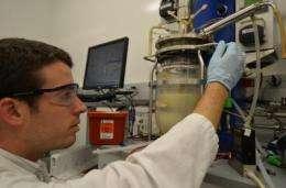 Sweet diesel! Breakthrough process converts sugar directly to diesel