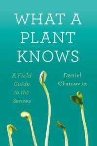 Tel Aviv University researcher says plants can see, smell, feel, and taste