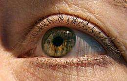 The Eye Tribe developed software enabling users to scroll or click on screens with their eyes