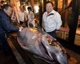 This 269-kilogramme (592-pound) bluefin tuna sold in Tokyo for 56.49 million yen ($736,500)