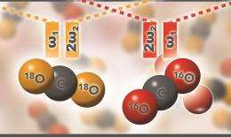 Toppling Raman shift in supercritical carbon dioxide