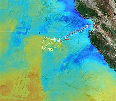 Tracking drifting algal blooms and the nutrients that keep them going