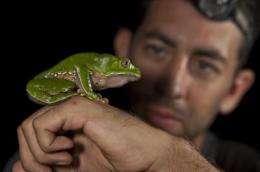 Treasure trove of wildlife found in Peru park