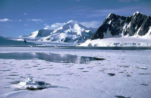Why Antarctic sea ice cover has increased under the effects of climate change
