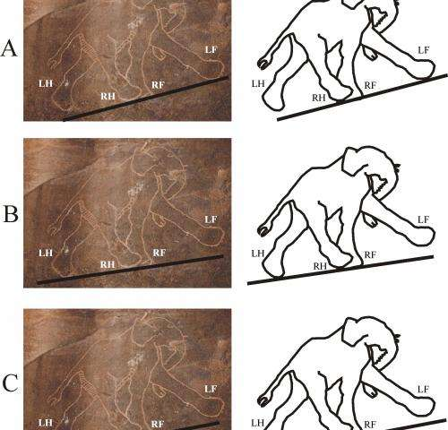 Cavemen were better at drawing animals than modern artists