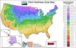 Warmer temperatures make new USDA plant zone map obsolete