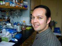 WHOI scientist receives marine microbiology initiative investigator award from Moore Foundation