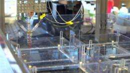 WPI team scales-up production of biopolymer microthreads