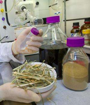 1-pot to prep biomass for biofuels
