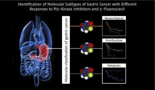 3 subtypes of gastric cancer suggest different treatment approaches