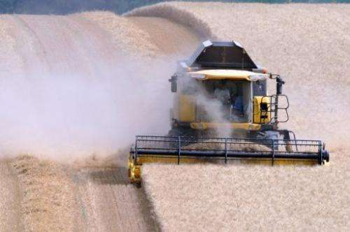 A farmer harvests wheat on July 25, 2013, in Civray-sur-Esves, central France