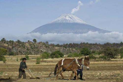 A farmer plows the land in San Nicolas de los Ranchos near the Popocatepetl Volcano on May 14, 2013